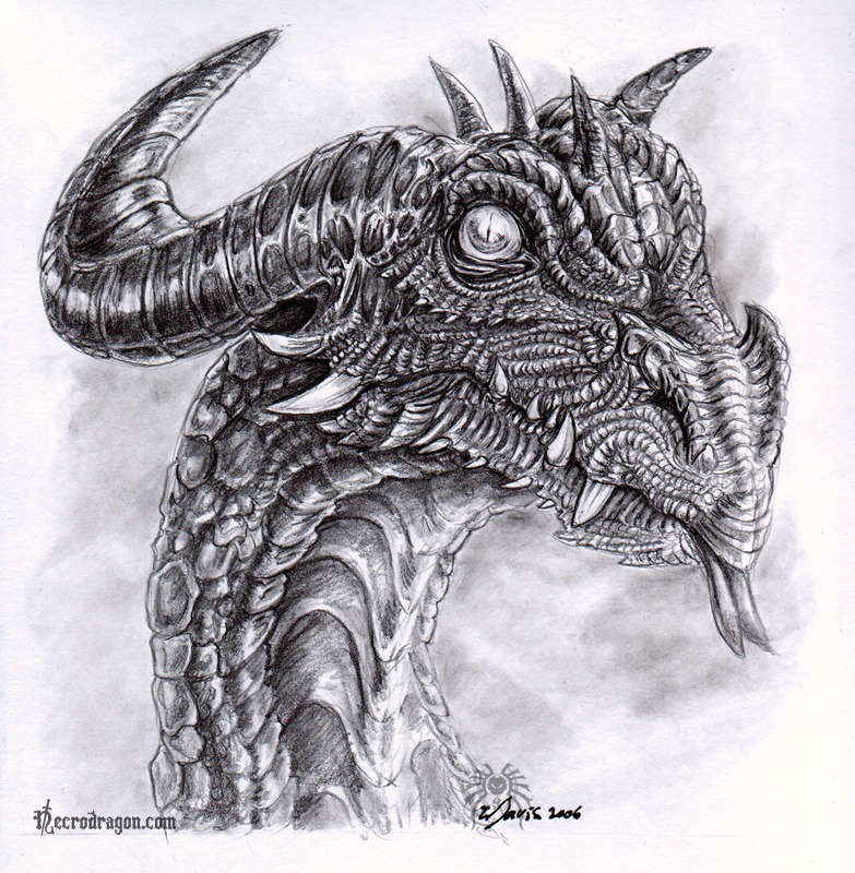 Drawings Of Dragons In Pencil