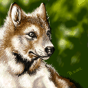 wolf_pup.png