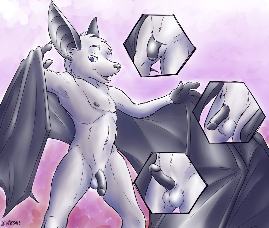 from Wilson gay furry bat